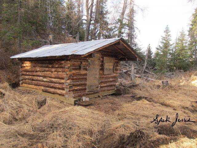 almighty log cabin building thread wilderness trapping and living Building A Cabin In The Alaskan Wilderness