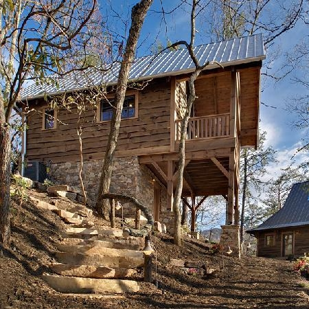 blue jays perch picture of cheshire cabin treehouse rentals Cabins In Black Mountain Nc