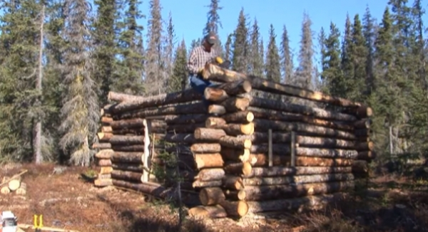 tiny pioneer log cabin in alaska built in 15 days Building A Cabin In The Alaskan Wilderness