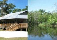 about our cabins palmetto island state park Palmetto State Park Cabins