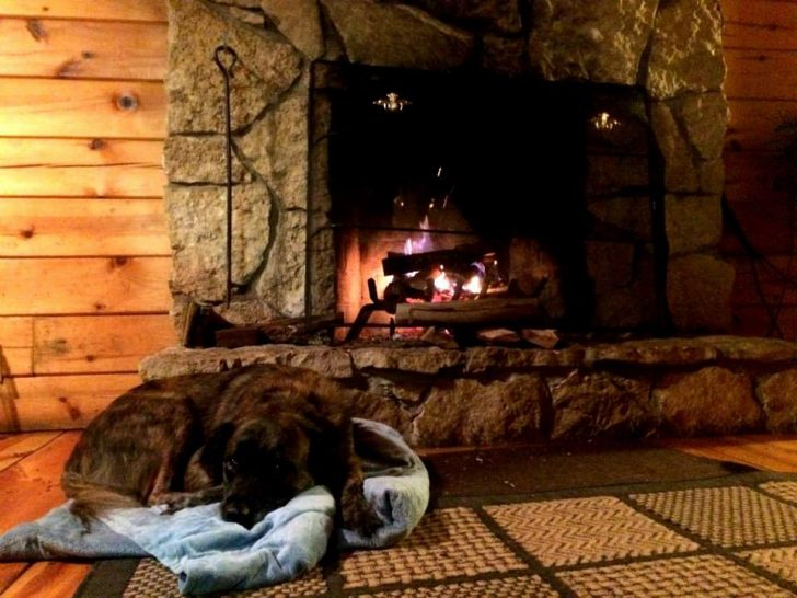 Permalink to Hocking Hills Pet Friendly Cabins Inspirations