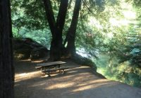 big sur campground cabins updated 2019 prices reviews ca Big Sur Cabins And Campground
