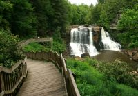 blackwater falls state park a west virginia state park located near Blackwater Falls State Park Cabins