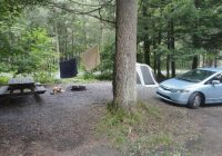 campsite 15 picture of worlds end state park forksville Worlds End State Park Cabins