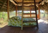 everglades tours eco tours everglades adventure tours swamp Florida Campgrounds With Cabins