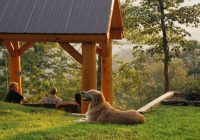 pet friendly smoky mountain cabins watershed cabins Smoky Mountain Cabins Pet Friendly