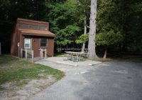 picture of campsite 247 at ludington state park michigan site 247 Ludington State Park Cabins