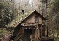 who would love to stay in this tiny cabin olympic national park Cabins Olympic National Park